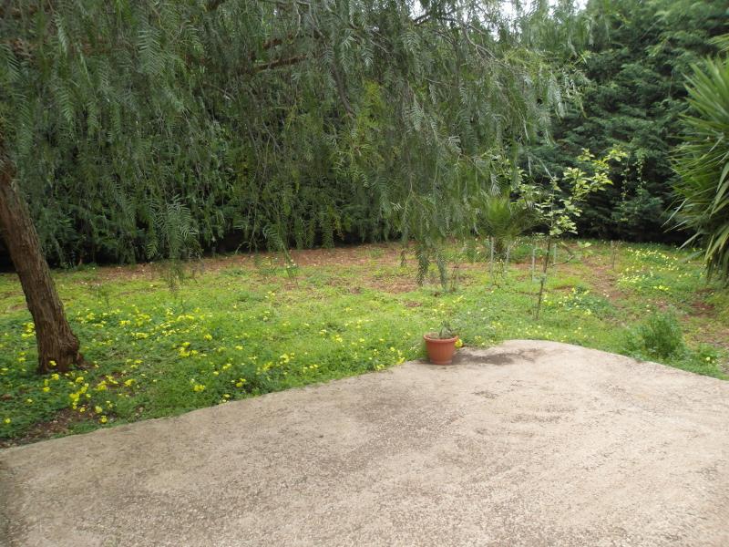 00071 Lim-mobiliare-giardino