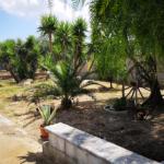 0000421 Lim-mobiliare-giardino antistante